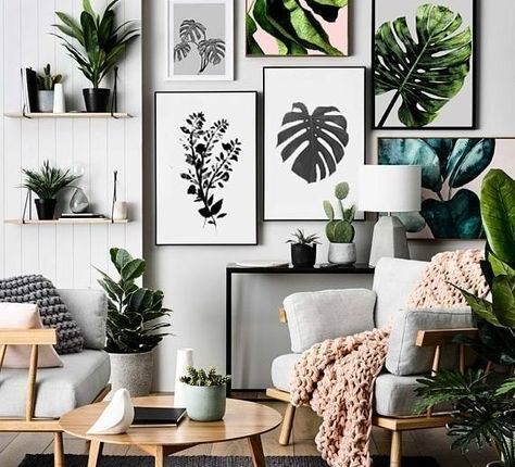 OVER SIZED HOUSE PLANTS MAKE A COME BACK – JULY 2019